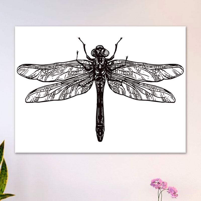 Tableau Libellule Naturaliste - Esprit cabinet de curiosité   GALI-ART.com
