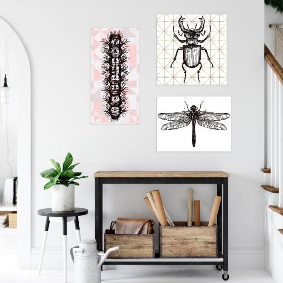 Tableau insecte pour déco naturaliste